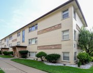 6849 North Olmsted Avenue Unit 8, Chicago image