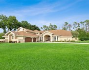 15751 Triple Crown Ct, Fort Myers image
