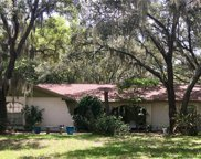 11208 Donneymoor Drive, Riverview image