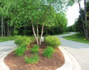 8347 Pleasantview Woods Drive Unit Lot 25, Harbor Springs image