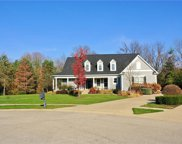 11648 Weeping Willow  Court, Zionsville image