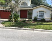 8809 Crayson Court, Kissimmee image