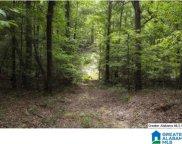 8532 Shady Trail Unit 401, Bessemer image