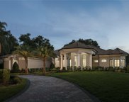 12816 Water Point Boulevard, Windermere image