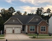 10819  Cove Point Drive, Charlotte image