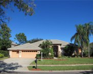 3833 Executive Drive, Palm Harbor image
