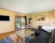 404 Lupine Drive, Steamboat Springs image