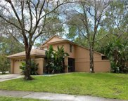 11817 Hickorynut Drive, Tampa image