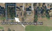 1073 Yellow Jasmine Dr., Longs image