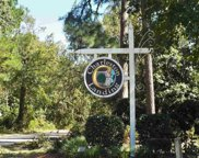 Lot 46 James Island Ave, North Myrtle Beach image