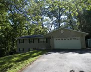 253 Old Pine Drive, Perryville image