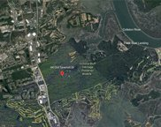 44 Old Sawmill Dr, Bluffton image