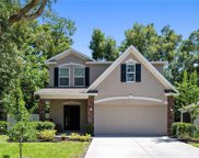 1408 Independence Lane, Mount Dora image