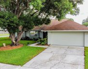 15819 Crying Wind Drive, Tampa image