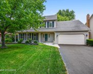 114 Green Valley Drive, Naperville image