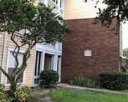 4115 Chatham Oak Court Unit 215, Tampa image