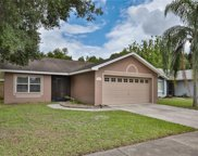 10824 Peppersong Drive, Riverview image