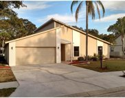 5626 Forester Pond Avenue, Palm Aire image