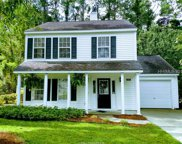 315 Mill Pond Road, Bluffton image