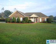 5034 Co Rd 43, Clanton image
