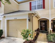 2754 Conch Hollow Drive, Brandon image