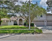 12815 Pacifica Place, Tampa image
