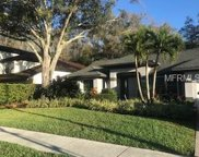 4937 Eagle Cove N Drive, Palm Harbor image
