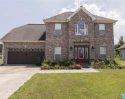 105 Birch Ct, Pell City image