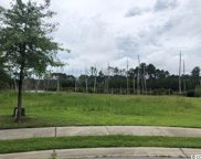 1008 Clamour Ct., Conway image