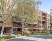 3300 Louisiana Avenue S Unit #[u'521'], Saint Louis Park image