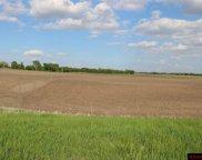 29947 Prairie Sage, Le Sueur image