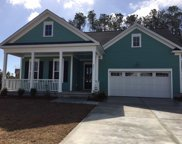 801 Longwood Bluffs Cir, Murrells Inlet image