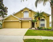 6008 Martinglade Place, Lithia image