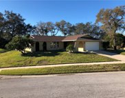 1625 Treasure Drive, Tarpon Springs image