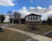 385 Stafford Court, Bolingbrook image