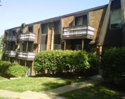 495 Bluff, Riverview image