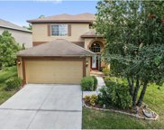 18143 Sandy Pointe Dr., Tampa image