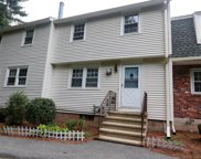 51 Olde Country Village Road, Londonderry image