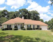 208 Willow Oaks Dr, Headland image