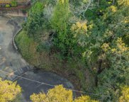 Oak, Belmont image