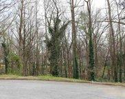 00 English Ivy Lane, Greenville image