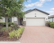 1607 Feather Grass Loop, Lutz image