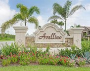 9525 Avellino Way Unit 2625, Naples image