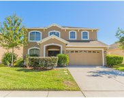 7852 Stoney Hill Drive, Wesley Chapel image