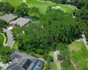 42 Osprey Cir N, Palm Coast image