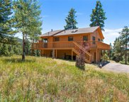 13606 Wamblee Trail, Conifer image