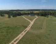 11979 W Argyle Road, Custer image