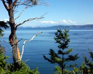 0 Fauntleroy Point Dr - Lot 1, Decatur Island image