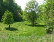 1 LOT LISAND, House Springs image