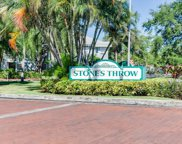 6916 Stonesthrow Circle N Unit 9106, St Petersburg image